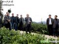 印江县2015年度茶产业发展工作会议召开