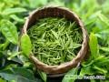 美国科学家研究发现绿茶抗癌机理