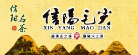 中国信阳毛尖茶网