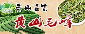 中国黄山毛峰茶网