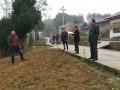 梁平:区林业局组织下乡指导村民栽种油茶致富树
