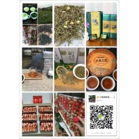长期销售绿茶,红茶,青茶,黑茶,白茶,花茶