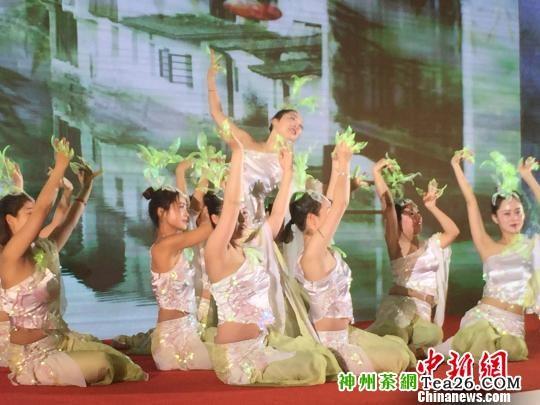 一片白茶创富一方2018中国安吉白茶博览会开幕