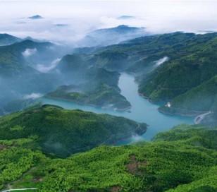 福建省政协调研茶文化遗产的保护利用