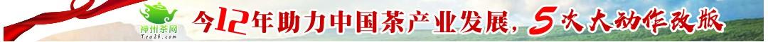 发扬中国茶文化,助力中国茶产业