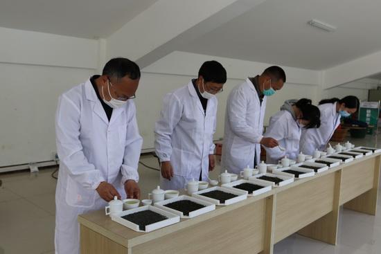 茶乡茶师育人不倦 茶学茶教助力产业