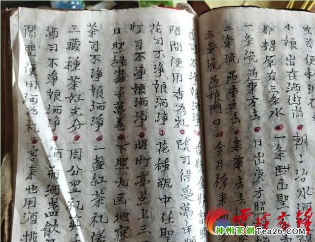 """李世明:從貧困戶變身新一代""""制茶人""""帶領群眾致富"""